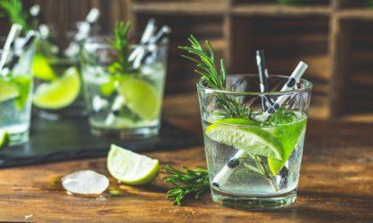Le Mojito un cocktail léger et frais !
