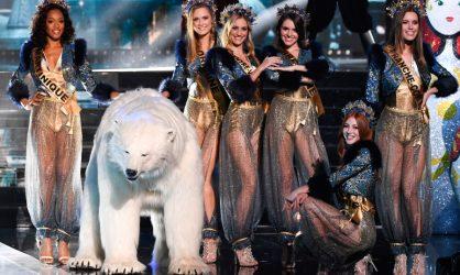 Miss France 2020 : l'ours n'était pas là par hasard