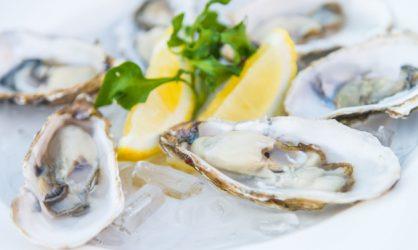 Les huîtres, stars des fêtes !
