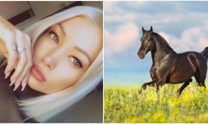 Montaine Mounet (Les Anges) : admise aux urgences après un accident de cheval