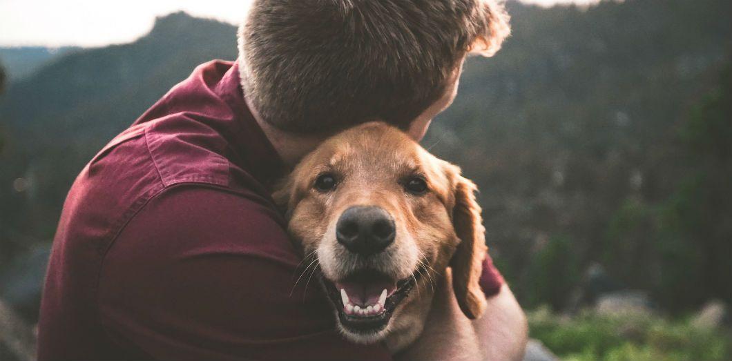 L'animal de compagnie choisi par votre homme peut vous en dire beaucoup sur lui