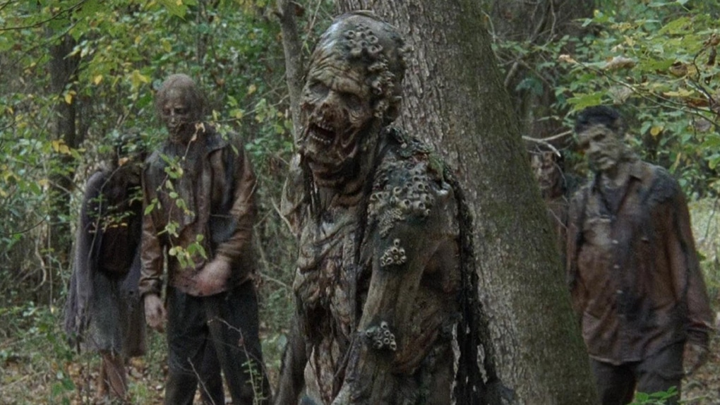 the-walking-dead-acteur-mordu-fan-prison