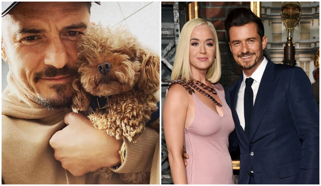 orlando-bloom-annonce-deces-chien-mighty-se-fait-tatouer-hommage