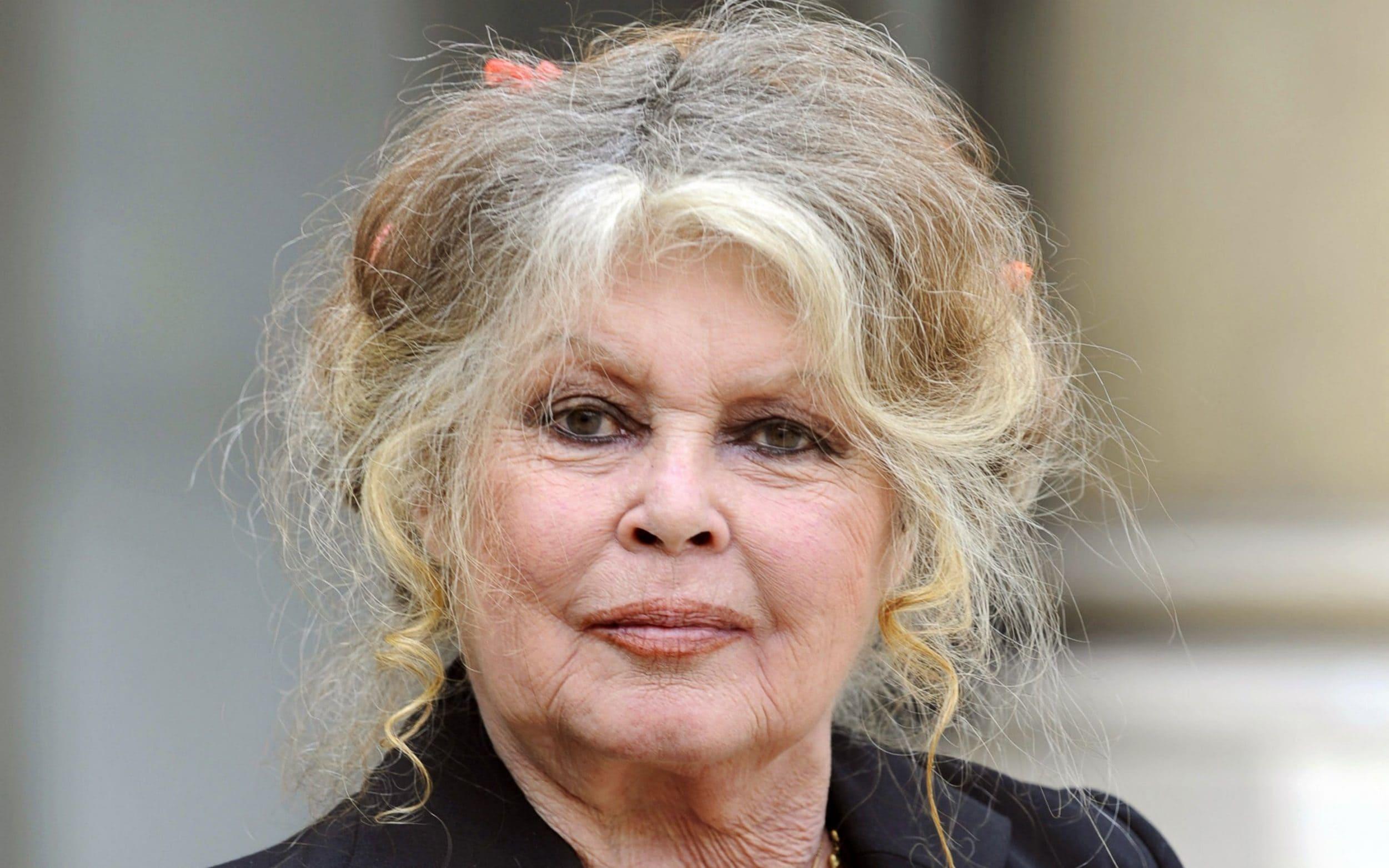 Brigitte Bardot : elle pousse un coup de gueule et tacle très sévèrement le gouvernement