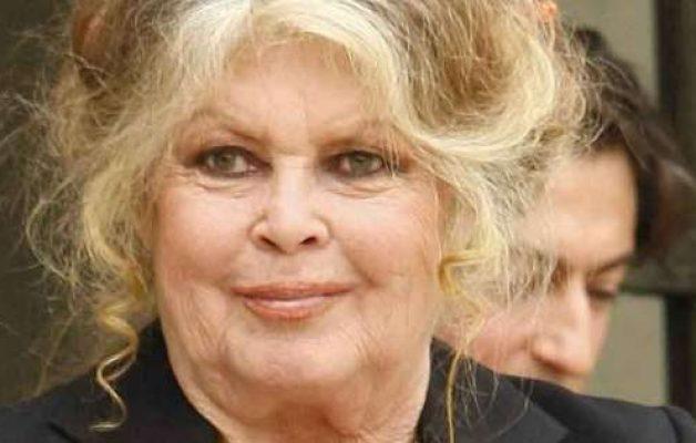 Brigitte Bardot : elle fait des révélations sur sa relation difficile avec son fils Nicolas