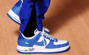 Louis Vuitton et Nike
